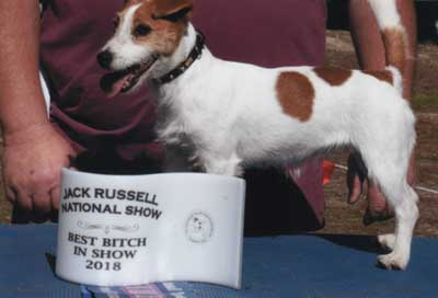 BEST BITCH IN SHOW 2018