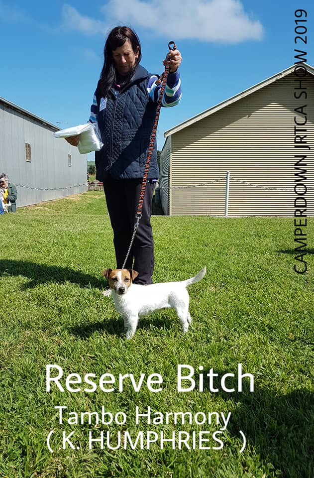 Reserve Bitch